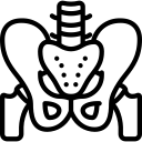 Osteodensitometrie coloana lombară